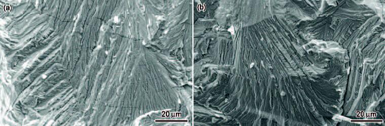 20181028023036 92524 - Effect of post-forging heat treatment on stress corrosion behavior of nuclear grade 316LN stainless steel in boiling MgCl2 solution