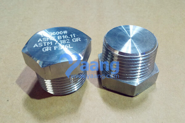 ASME B16.11 ASTM A182 F316L Threaded Hexagonal Plug 1″ CL3000